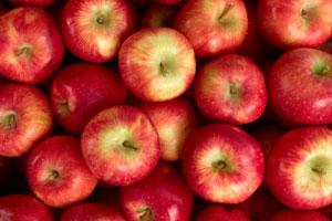 Äpfel sollte man gut waschen wegen der Pestizide auf der Schale