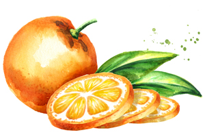 Feinen Sirup selber machen: Orange