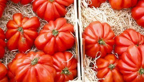 tomatensorten welche tomate zu was am besten passt. Black Bedroom Furniture Sets. Home Design Ideas