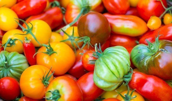 Cherry, Dattel, Rispe? Welche Tomatensorte zu was passt