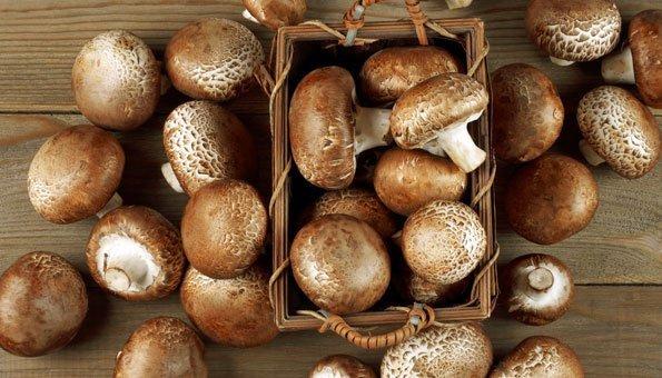 Champignons enthalten von den pflanzlichen Lebensmitteln mit am meisten Vitamin D.