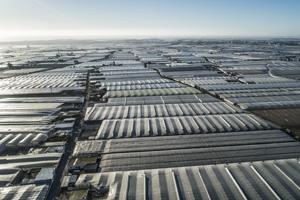 Lebensmittelanbau Spanien Almeria verbraucht enorm viel Wasser