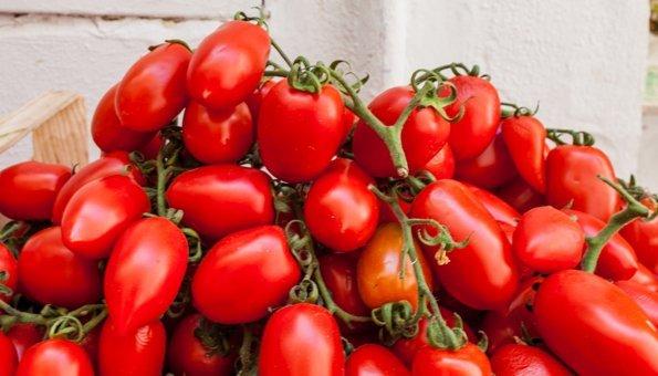 Tomatensorten: Welche Tomate zu was am besten passt