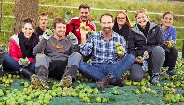 Vergolden Sie Food Waste mit selbst gepflückten Äpfeln