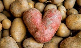 Kartoffeln lagern: So bleiben sie am längsten frisch