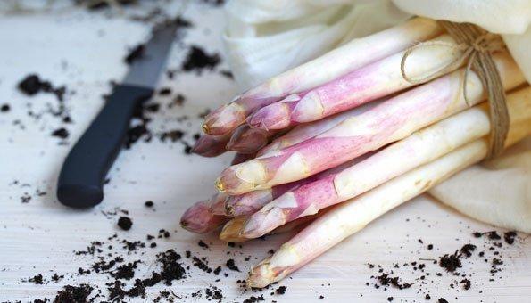 Weisse Spargeln kochen: 5 Tipps zum Zubereiten der Stangen