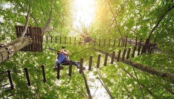 Ausflug mit Action: Im Seilpark die Natur von oben erkunden