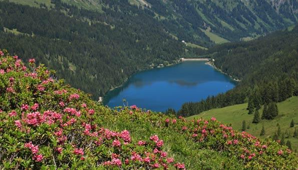 Badesee in der Schweiz: der Arnensee
