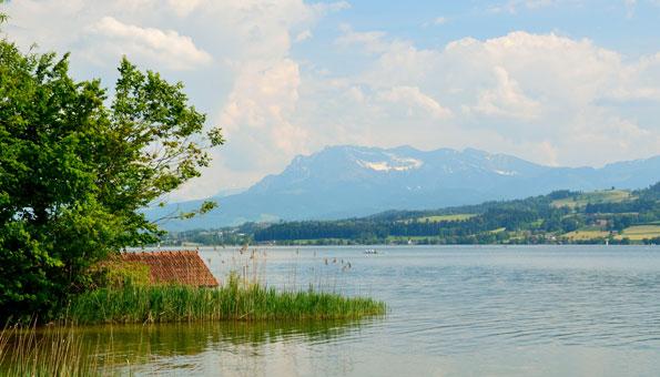 Badeseen Schweiz: Der Sempachersee ist perfekt geeignet für Badespass mit der ganzen Familie