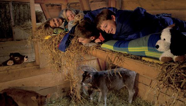 Schlafen im Stroh auf dem Bauernhof