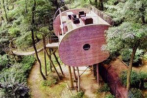 Baumhaus Hotel zum Übernachten: Das Tree Inn nahe der Schweiz