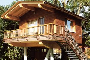 Das Baumhaushotel Wurzelbaumhaus in Neuenkirch