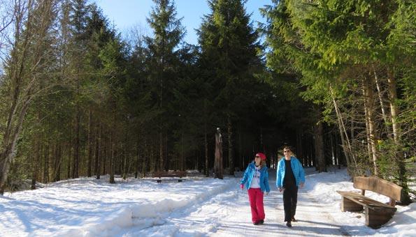 Winterwandern auf dem Grottenweg in Engelberg