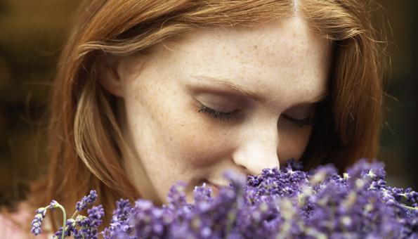 Lavendelöl: Wirkung des Lavendeldufts