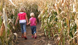 5 Maislabyrinthe in der Schweiz, die nicht nur Kindern Spass machen