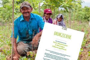 Nachhaltige Geschenke: 22 Ideen für sinnvolle Geschenke. Baum schenken.