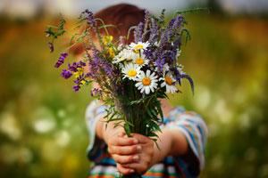 Nachhaltige Geschenke: 22 Ideen für sinnvolle Geschenke. Blumen selber pflücken.