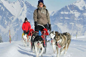 Nachhaltige Geschenke: 22 Ideen für sinnvolle Geschenke. Husky Abenteuer schenken.