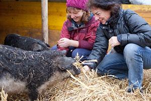 Nachhaltige Geschenke: 22 Ideen für sinnvolle Geschenke. Tierpatenschaft.