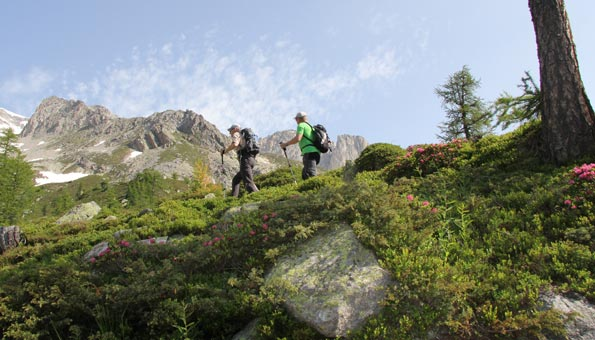 Vier-Quellen-Weg im Gotthardmassiv: Wandern zu Quellen unserer Flüsse