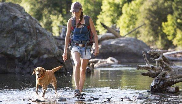 Wandern mit Hund: Schöne und hundefreundliche Wanderwege in der Schweiz