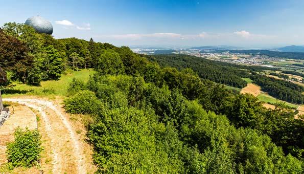 Wandern in der Region Zürich: Die Gratwanderung auf der Lägern führt vom Zürcher Unterland in den Aargau