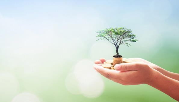 ESG: Kriterien für die nachhaltige Geldanlage
