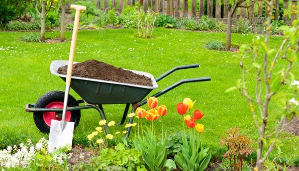 Gartenpflege: Tipps, wie Sie nachhaltiger gärtnern