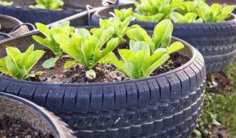 Raus aus dem Kübel! 16 Pflanzgefässe selber machen