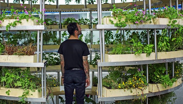Kleines Urban Gardening ganz gross: Der innovative Growroom