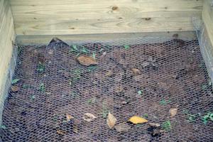 Maschendraht als Schutz vor Wühlmäusen und anderen Schädlingen am Boden des Hochbeets.