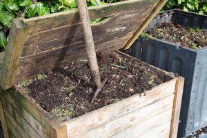Kompost zum Mulchen im Garten