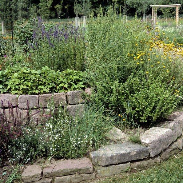 Kräuterspirale: Viele frische Gewürze auf wenig Platz anbauen