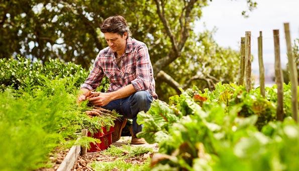 Wie Permakultur funktioniert, Tipps für Garten und Planung
