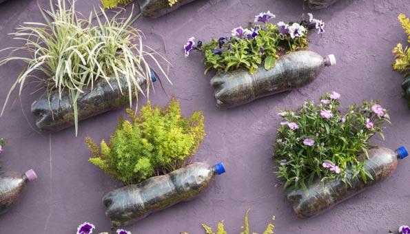 Pflanzgefässe aus Petflaschen und anderen Dingen selber machen