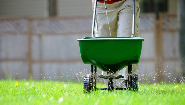 Rasen düngen mit einem Streuwagen