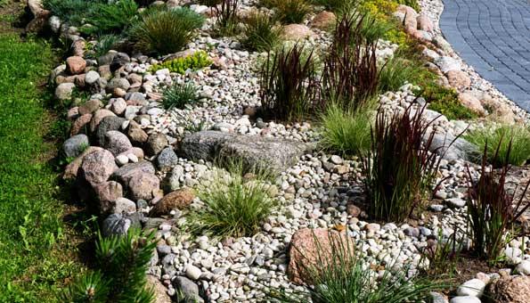 Steingarten mit Gräsern bepflanzen