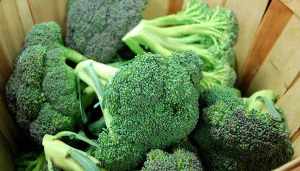 Brokkoli Ernten: Im Juni Beginnt Endlich Die Erntezeit Frische Salate Eigenen Garten Ernten
