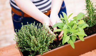 Mit wenig Platz viel ernten: So bringt Ihr Garten mehr Ertrag