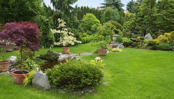 einen Steingarten anlegen und einen Kontrast schaffen im Garten