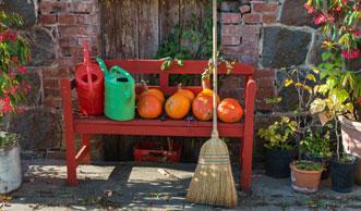 Garten im Oktober