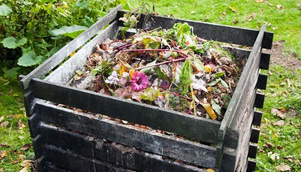 Richtig kompostieren im eigenen Garten: So einfach geht's