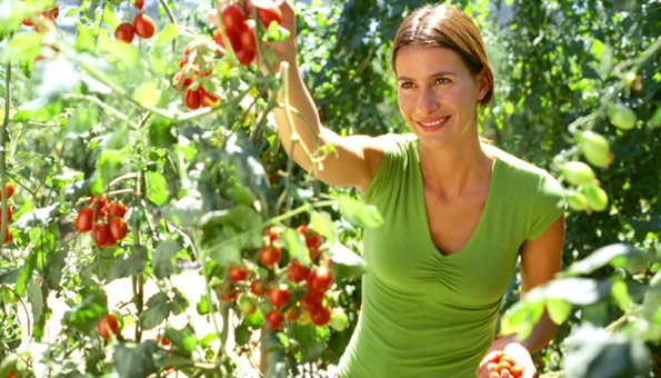Raum und ressourcen besser genutzt for Pflanzen laden berlin