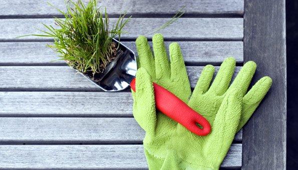 Gartensaison: So Bereiten Sie Ihren Bio-garten Vor Fruhjahrsputz Garten Tipps Gartensaison