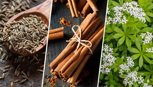 Cumarin: Vorkommen und Wirkung des Aromastoffes