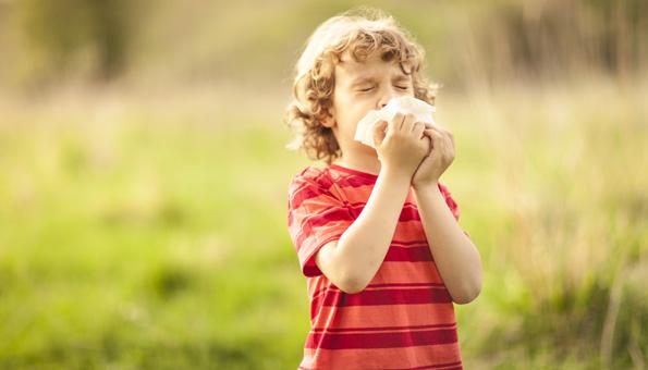 Heuschnupfen: Symptome und Hausmittel gegen Pollenallergie