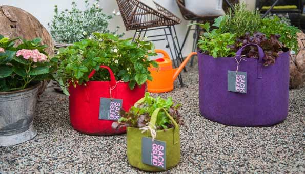 Wettbewerb: Einen von fünf Pflanzsäcken von «Sackgsund» gewinnen