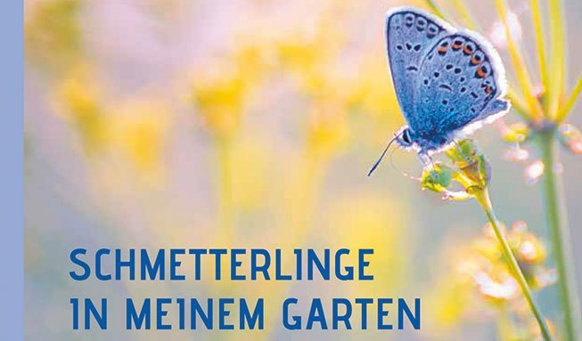 Gewinnen sie 3x1 Buch «Schmetterlinge in meinem Garten»