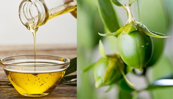 Jojobaöl für Haut und Haar: Alles zur Wirkung & Anwendungstipps