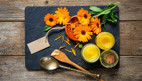 Ringelblumensalbe: Wirkung, Verwendung & einfaches Rezept